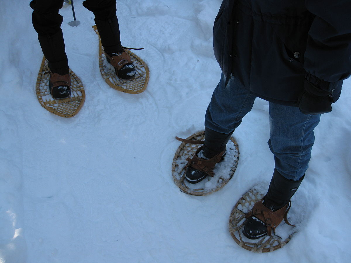 Snowshoes Outside in Snow